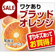 ブラッドオレンジセール